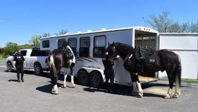 KCPD Mounted Patrol
